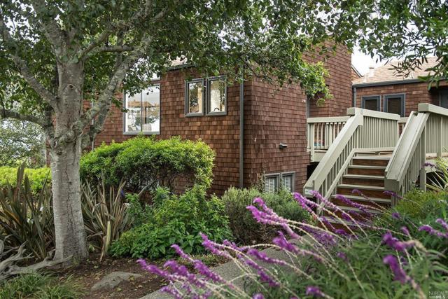 298 Headlands Court, Sausalito, CA 94965 (#21822413) :: Ben Kinney Real Estate Team