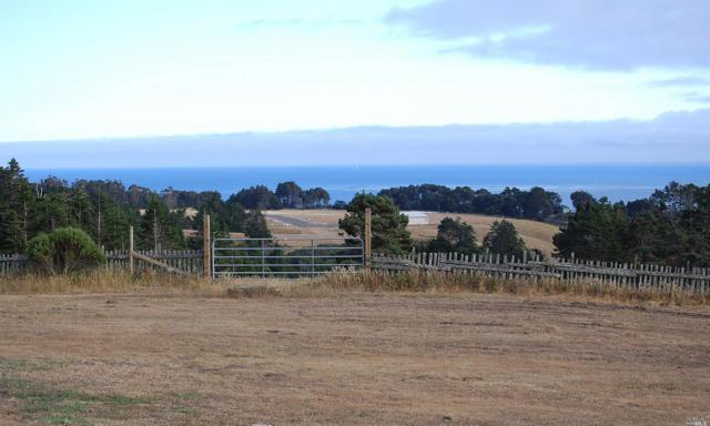 27101 S Highway One Highway, Point Arena, CA 95468 (#21822464) :: Intero Real Estate Services
