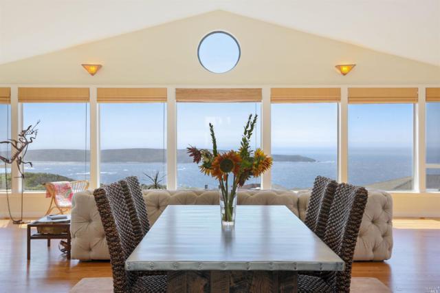 569 Oceana Drive, Dillon Beach, CA 94929 (#21822544) :: W Real Estate | Luxury Team