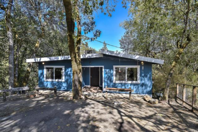8191 Spring Drive, Forestville, CA 95436 (#21822861) :: RE/MAX GOLD