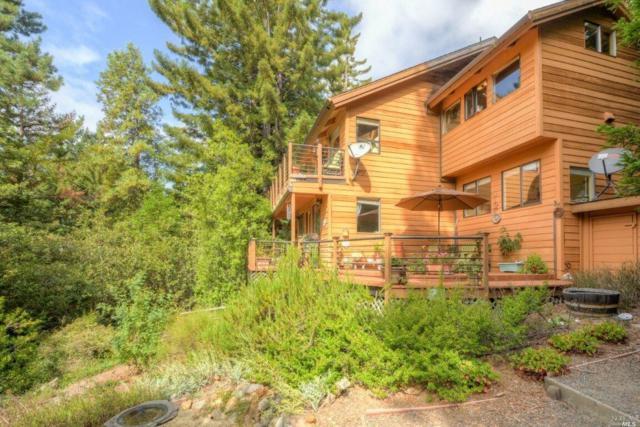 38250 Ocean Ridge Drive, Gualala, CA 95445 (#21823185) :: W Real Estate | Luxury Team