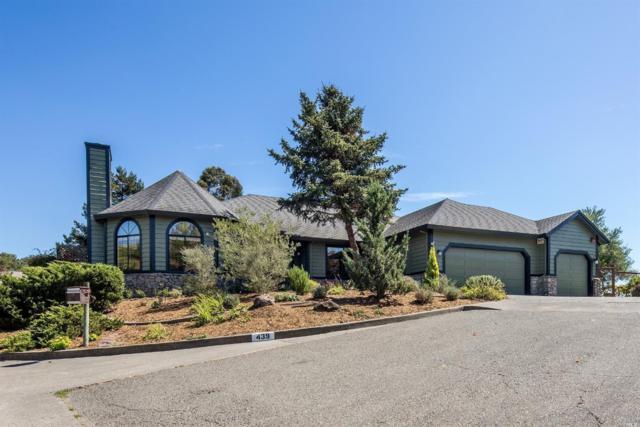 439 Amber Way, Petaluma, CA 94952 (#21823586) :: Ben Kinney Real Estate Team
