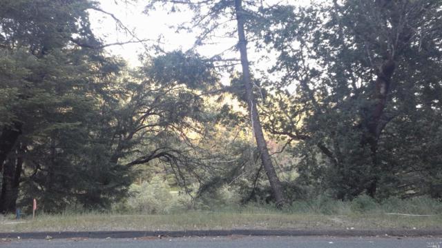 2713 Primrose Drive, Willits, CA 95490 (#21823611) :: Ben Kinney Real Estate Team
