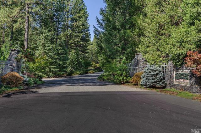 13233 Woodstock Drive, Nevada City, CA 95959 (#21823706) :: Ben Kinney Real Estate Team