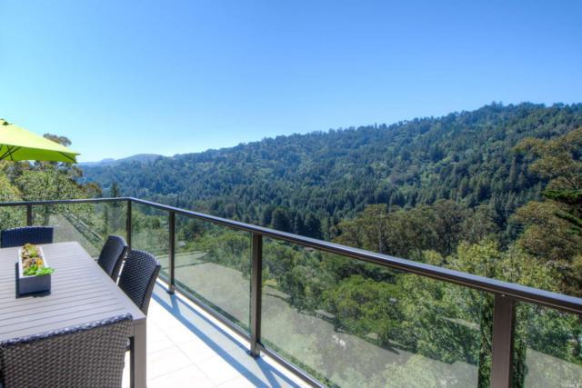355 Tamalpais Avenue, Mill Valley, CA 94941 (#21823712) :: Rapisarda Real Estate