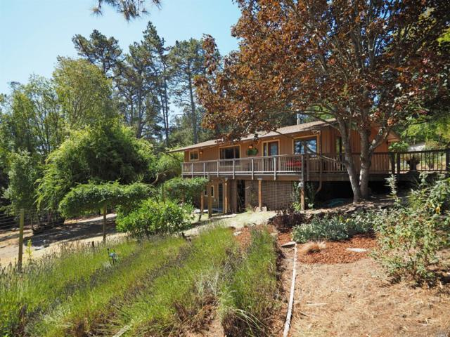 3600 Bloomfield Road, Sebastopol, CA 95472 (#21823771) :: RE/MAX GOLD