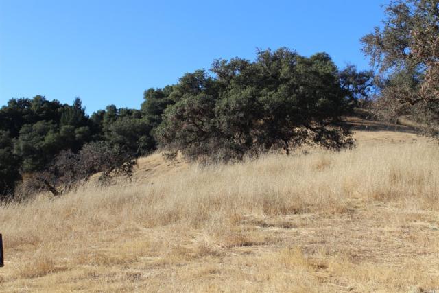 2095 Mark West Springs Road, Santa Rosa, CA 95404 (#21823873) :: Ben Kinney Real Estate Team
