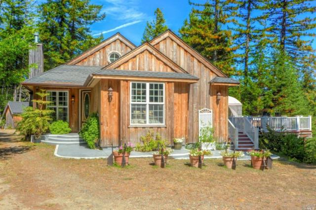 40000 Eureka Hill Road, Point Arena, CA 95468 (#21823889) :: Ben Kinney Real Estate Team