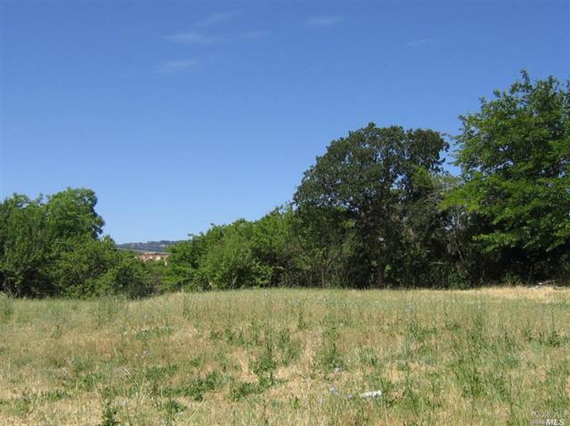 1343 Callen Street, Vacaville, CA 95688 (#21823945) :: Ben Kinney Real Estate Team