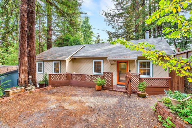 17276 Summit Avenue, Guerneville, CA 95446 (#21824158) :: RE/MAX GOLD