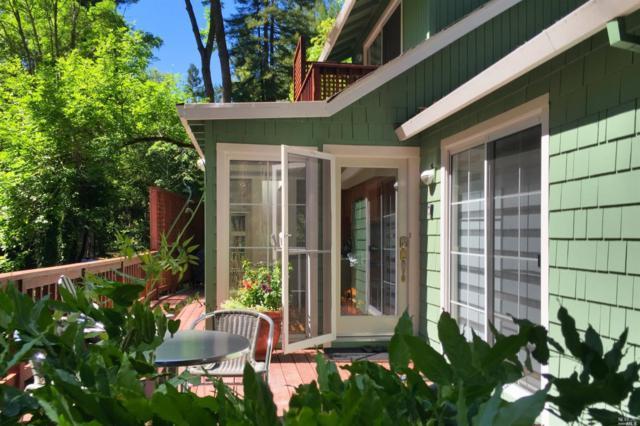 8101 Bohemian Highway, Monte Rio, CA 95462 (#21824181) :: W Real Estate | Luxury Team