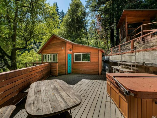 14385 Old Cazadero Road, Guerneville, CA 95446 (#21824228) :: RE/MAX GOLD