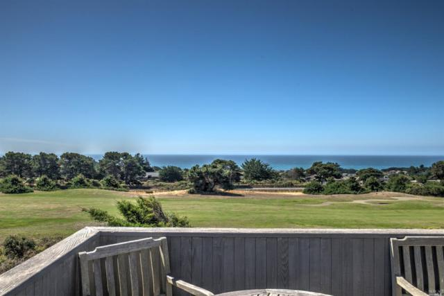 41319 W. Wind, The Sea Ranch, CA 95497 (#21824256) :: Ben Kinney Real Estate Team