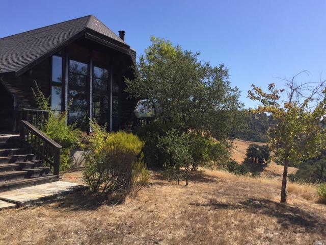 23655 Vineyard Road, Geyserville, CA 95441 (#21824261) :: Ben Kinney Real Estate Team