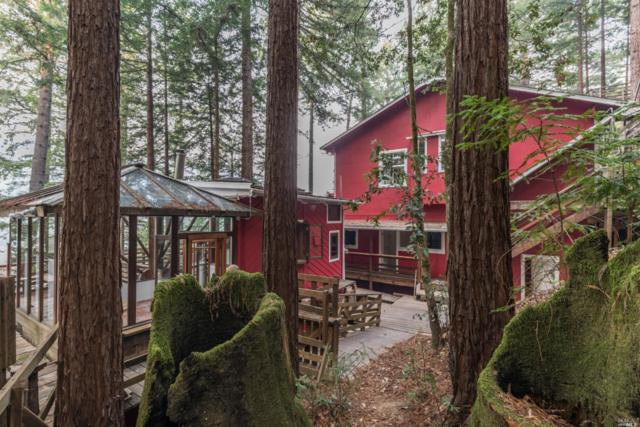 18602 Old Monte Rio Road, Guerneville, CA 95446 (#21824436) :: Rapisarda Real Estate