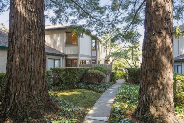 111 Cheda Lane, Novato, CA 94947 (#21824522) :: W Real Estate | Luxury Team