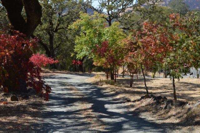 4050 Lake County Highway, Calistoga, CA 94515 (#21824710) :: Ben Kinney Real Estate Team