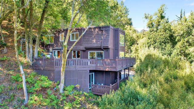 351 Laverne Avenue, Mill Valley, CA 94941 (#21824775) :: W Real Estate | Luxury Team