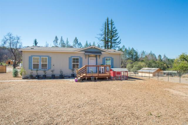 1725 Mark West Springs Road, Santa Rosa, CA 95404 (#21824940) :: Ben Kinney Real Estate Team