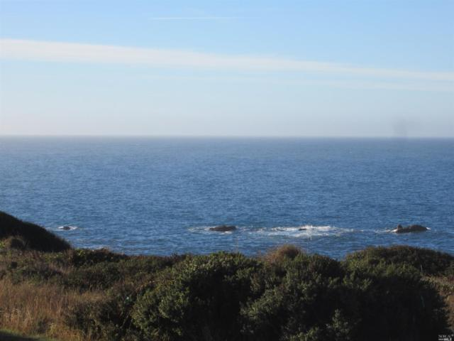 222 Sea Drift Road, The Sea Ranch, CA 95497 (#21825392) :: Rapisarda Real Estate