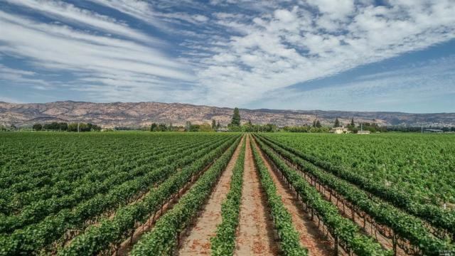 50 Hunter Ranch Road, Napa, CA 94558 (#21825495) :: Lisa Imhoff   Coldwell Banker Kappel Gateway Realty