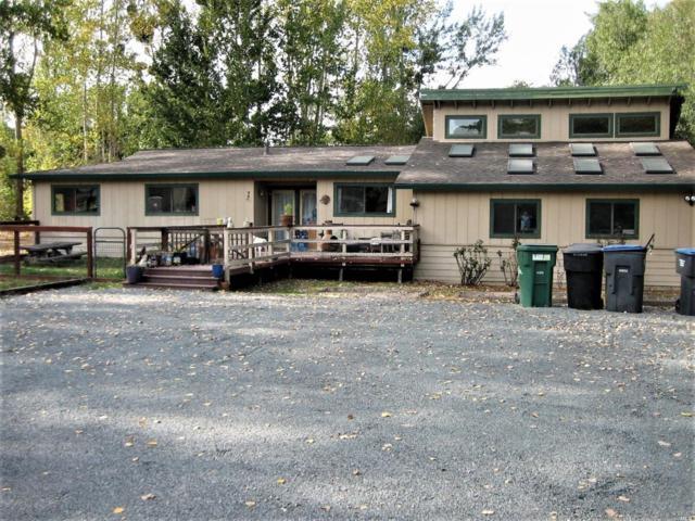 180 Ferguson Road, Sebastopol, CA 95472 (#21825539) :: Perisson Real Estate, Inc.
