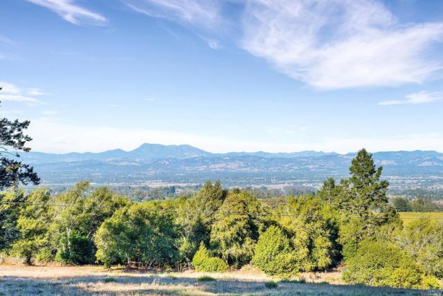 5120 Burnside Road, Sebastopol, CA 95472 (#21825589) :: W Real Estate | Luxury Team