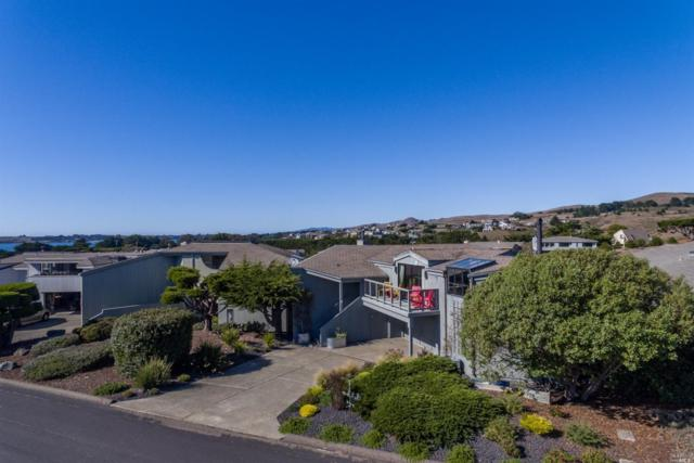 147 Surfbird Court, Bodega Bay, CA 94923 (#21825934) :: Intero Real Estate Services