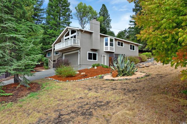 1436 University Street, Healdsburg, CA 95448 (#21826082) :: W Real Estate | Luxury Team