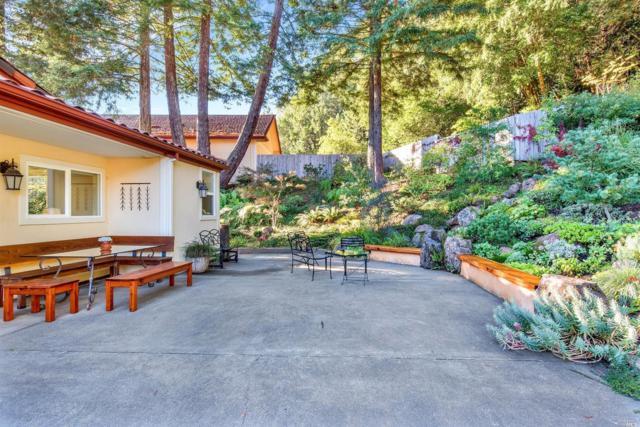 14634 Jomark Lane, Occidental, CA 95465 (#21826348) :: W Real Estate | Luxury Team