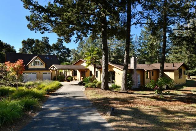 5001 Maddocks Road, Sebastopol, CA 95472 (#21826486) :: W Real Estate | Luxury Team