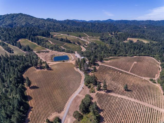 128 Highway 128, Yorkville, CA 95494 (#21826737) :: Ben Kinney Real Estate Team