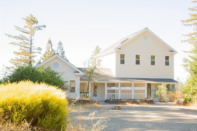 7 Three Point Road, Annapolis, CA 95412 (#21826805) :: Intero Real Estate Services
