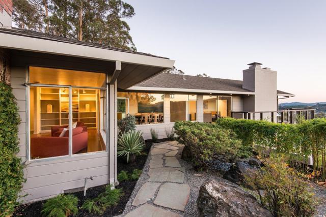 88 Deer Park Avenue, San Rafael, CA 94901 (#21826833) :: W Real Estate | Luxury Team