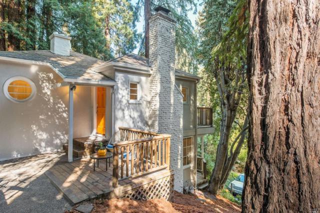 108 Miller Avenue, Mill Valley, CA 94941 (#21827213) :: Perisson Real Estate, Inc.