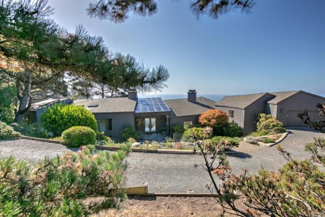 101 Seawalk Drive, The Sea Ranch, CA 95497 (#21827624) :: Rapisarda Real Estate