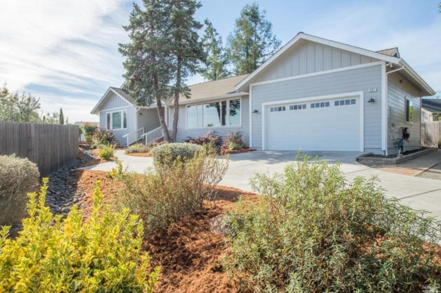 401 Ronsheimer Road, Penngrove, CA 94951 (#21827724) :: RE/MAX GOLD