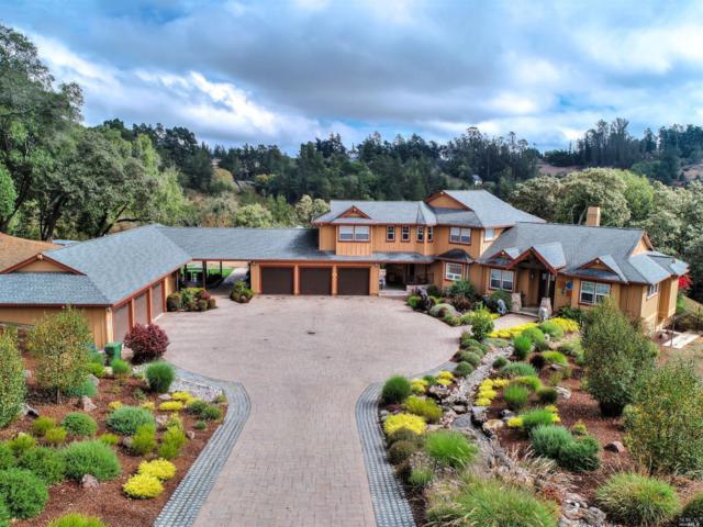 3645 Celesta Court, Sebastopol, CA 95472 (#21827777) :: W Real Estate | Luxury Team