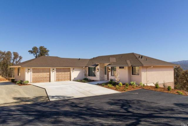 9850 Stern Lane, Browns Valley, CA 95918 (#21827961) :: Rapisarda Real Estate