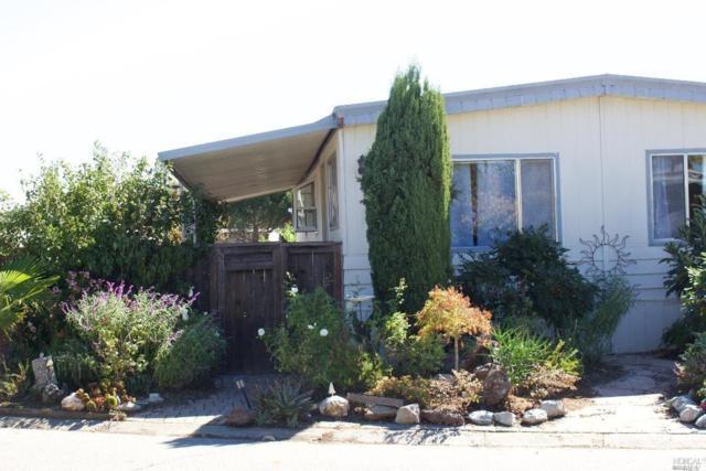 98 Yosemite Road, San Rafael, CA 94903 (#21828557) :: RE/MAX GOLD