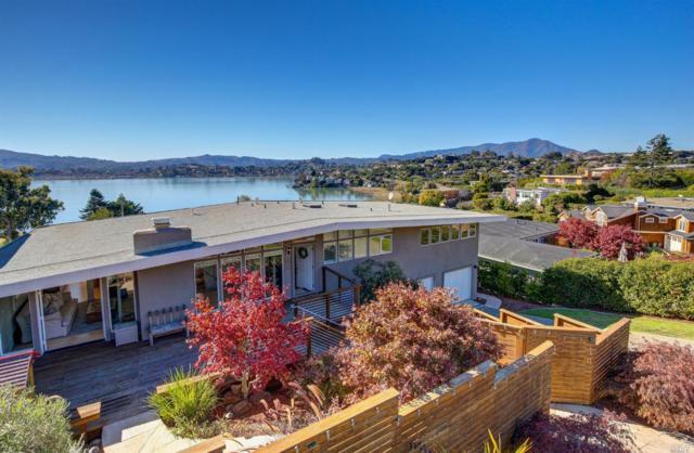 130 Stewart Drive, Tiburon, CA 94920 (#21828770) :: Intero Real Estate Services