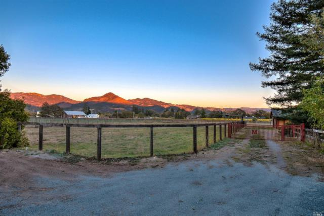 100 Frey Road, Kenwood, CA 95409 (#21829210) :: RE/MAX GOLD