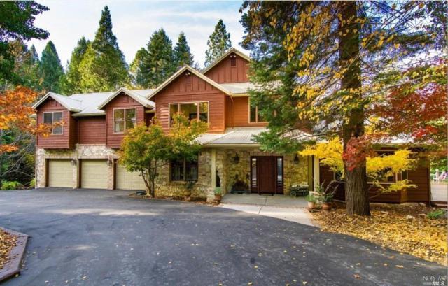 10955 Murchie Mine Road, Nevada City, CA 95959 (#21829310) :: Perisson Real Estate, Inc.