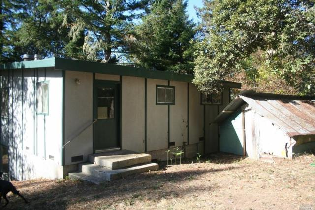 53 Magic Mountain Road, Cazadero, CA 95421 (#21829599) :: Ben Kinney Real Estate Team