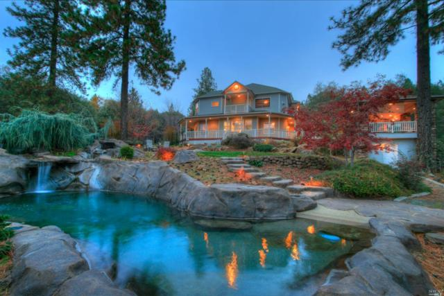 14280 Normandy Lane, Grass Valley, CA 95949 (#21829872) :: Windermere Hulsey & Associates