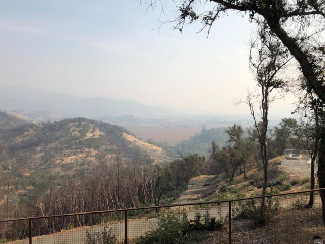 3610 State Highway 128, Calistoga, CA 94515 (#21829891) :: Intero Real Estate Services