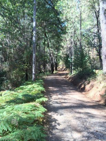 20739 You Bet Road, Grass Valley, CA 95945 (#21830096) :: Windermere Hulsey & Associates
