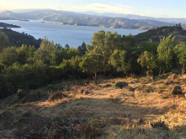 10098 Emerald Drive, Kelseyville, CA 95451 (#21830100) :: Lisa Perotti | Zephyr Real Estate