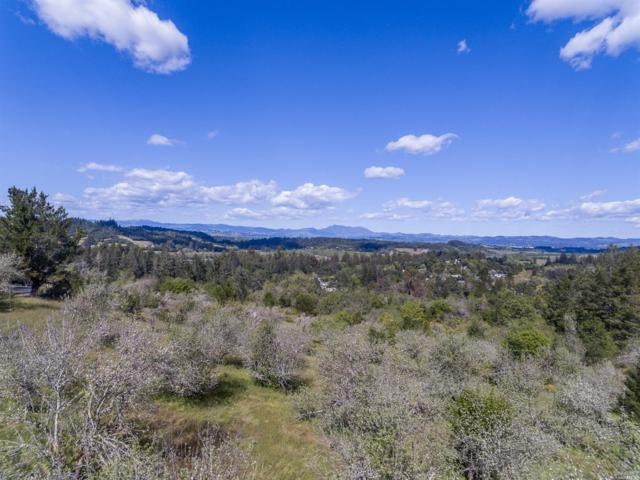 0 Giusti Road, Forestville, CA 95436 (#21830173) :: RE/MAX GOLD
