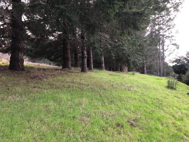 542 Redwood Road, Whitethorn, CA 95589 (#21830326) :: Perisson Real Estate, Inc.